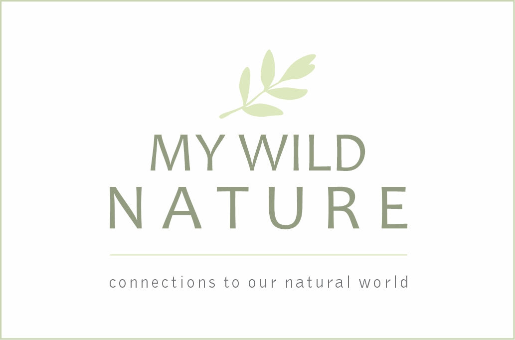 My Wild Nature - Logo3