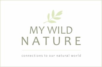 My Wild Nature - Logo3